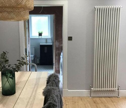 white vertical column windsor radiator