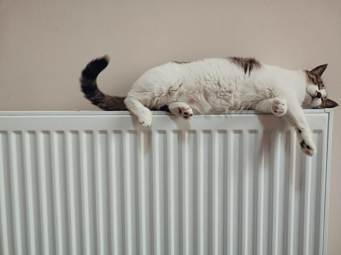 A cat lying comfortably on top of a radiator