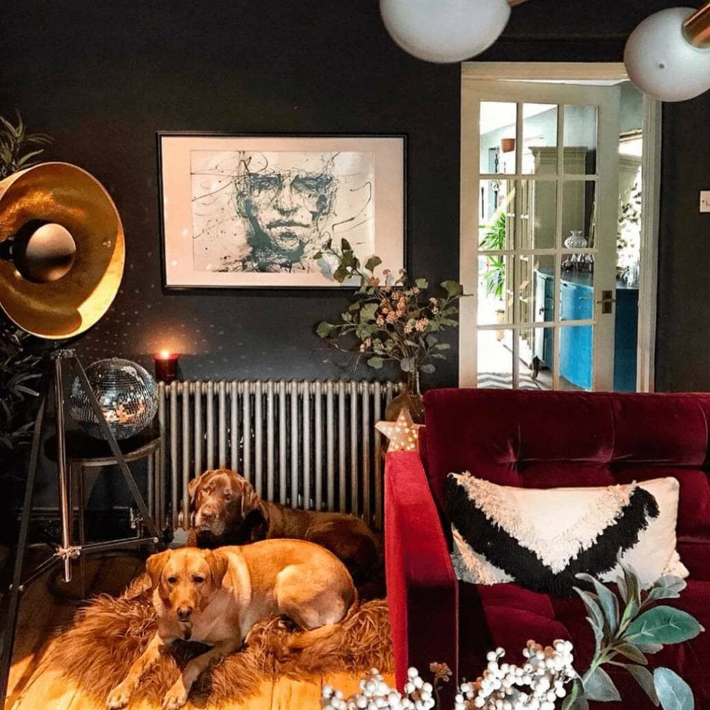 Two dogs next to a Milano Windsor radiator